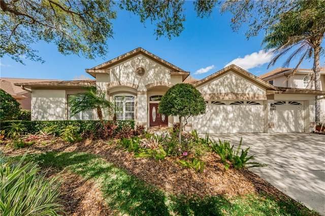 5246 Karlsburg Place, Palm Harbor, FL 34685 (MLS #U8114226) :: Team Borham at Keller Williams Realty