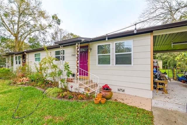 17610 Simmons Road, Lutz, FL 33548 (MLS #U8114250) :: CGY Realty