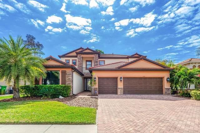 2614 Grand Lakeside Drive, Palm Harbor, FL 34684 (MLS #U8114287) :: Delgado Home Team at Keller Williams