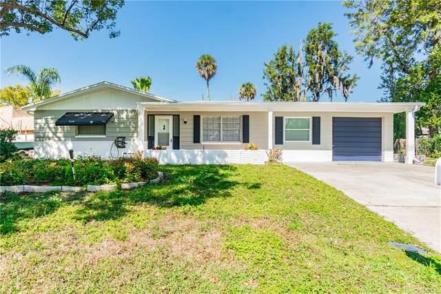 3615 Annona Court, Holiday, FL 34691 (MLS #U8114320) :: Positive Edge Real Estate