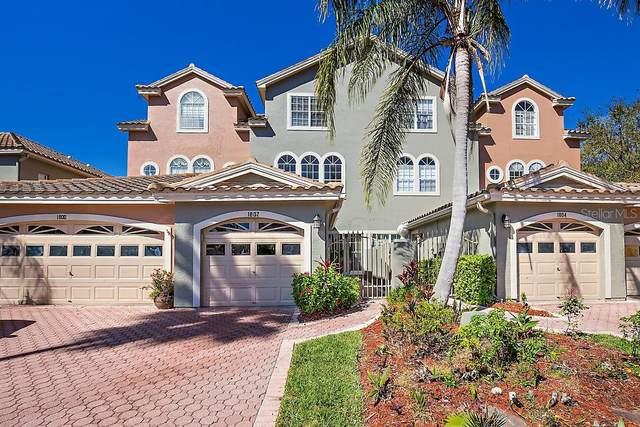 1802 Lago Vista Boulevard, Palm Harbor, FL 34685 (MLS #U8114353) :: Griffin Group