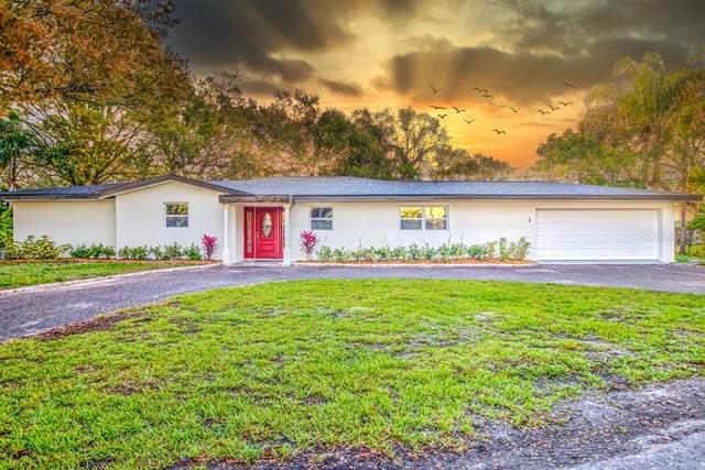 2237 Belleair Road, Clearwater, FL 33764 (MLS #U8114419) :: Keller Williams Realty Peace River Partners