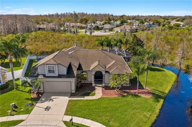 8600 Ardenwood Court, Trinity, FL 34655 (MLS #U8114420) :: Premier Home Experts