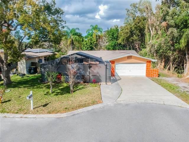 1660 Illinois Road, Clearwater, FL 33756 (MLS #U8114501) :: Everlane Realty