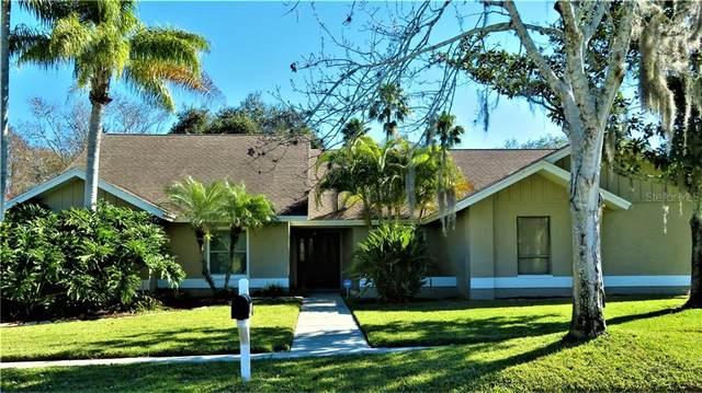 2973 Westcott Drive, Palm Harbor, FL 34684 (MLS #U8114510) :: Bridge Realty Group