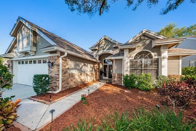 4121 Seton Circle, Palm Harbor, FL 34683 (MLS #U8114514) :: Delgado Home Team at Keller Williams