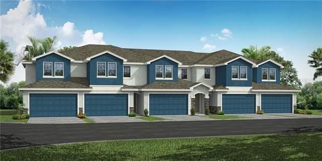 1515 Caldera Court, Clearwater, FL 33756 (MLS #U8114524) :: Everlane Realty