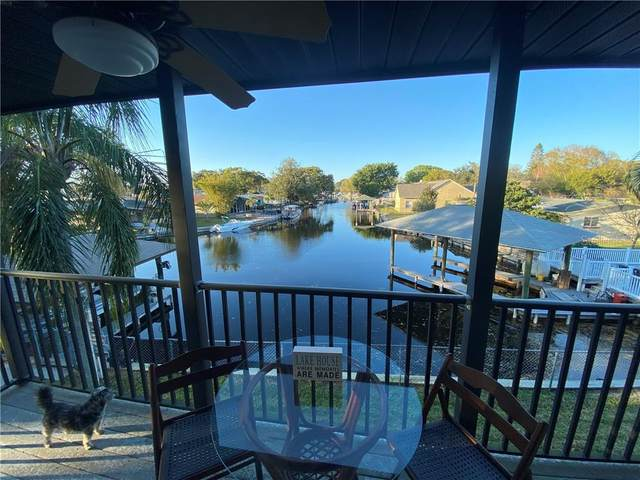 176 Maple Avenue, Palm Harbor, FL 34684 (MLS #U8114544) :: Bridge Realty Group