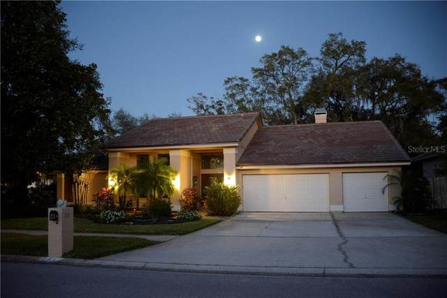 291 Old Oak Circle, Palm Harbor, FL 34683 (MLS #U8114559) :: Bridge Realty Group