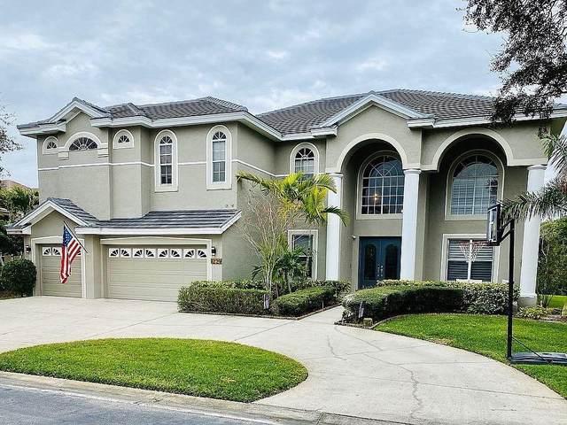 1229 Darlington Oak Circle NE, St Petersburg, FL 33703 (MLS #U8114668) :: Zarghami Group