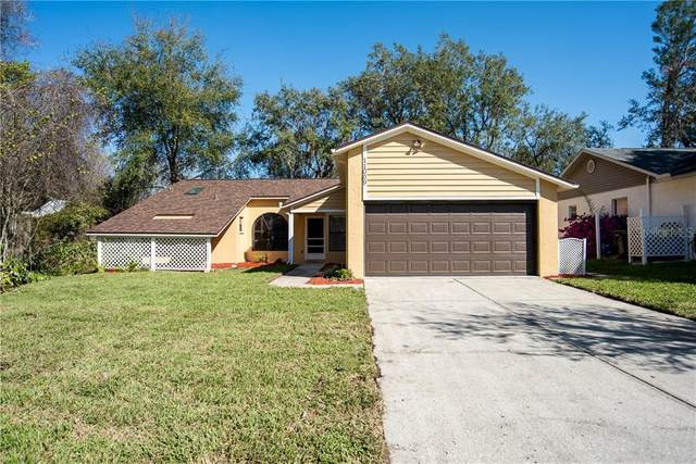 11009 Austin Court, New Port Richey, FL 34654 (MLS #U8114683) :: Premier Home Experts