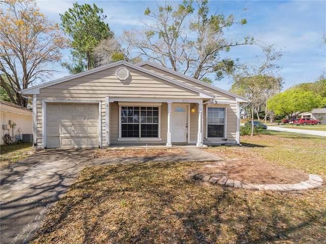 3860 Green Dolphin Drive, Palm Harbor, FL 34684 (MLS #U8114695) :: Delgado Home Team at Keller Williams