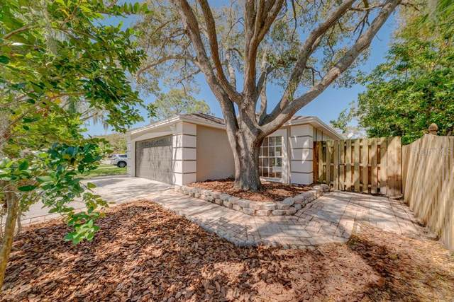 3745 Fremantle Drive, Palm Harbor, FL 34684 (MLS #U8114741) :: Delgado Home Team at Keller Williams