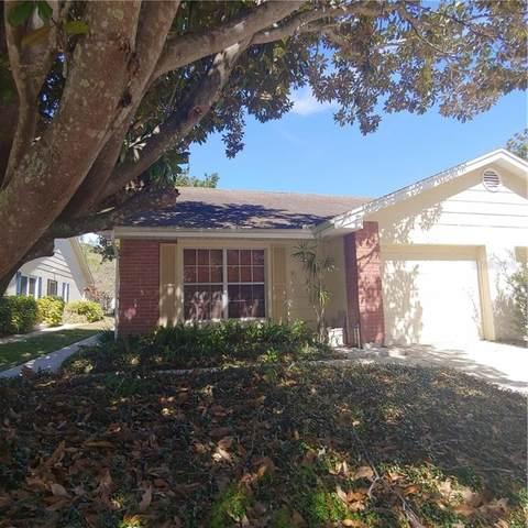 2831 Whitehall Drive, Palm Harbor, FL 34684 (MLS #U8114769) :: Delgado Home Team at Keller Williams