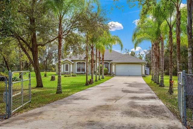 18830 Starry Street, Orlando, FL 32833 (MLS #U8114789) :: Griffin Group