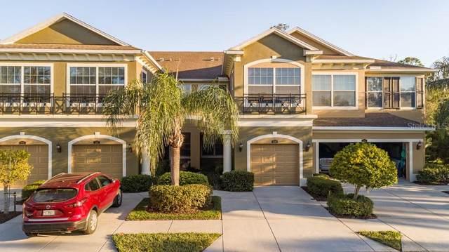 Tampa, FL 33626 :: Prestige Home Realty