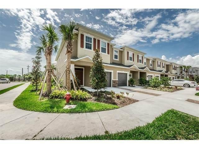 502 Cabernet Way, Oldsmar, FL 34677 (MLS #U8114908) :: Armel Real Estate