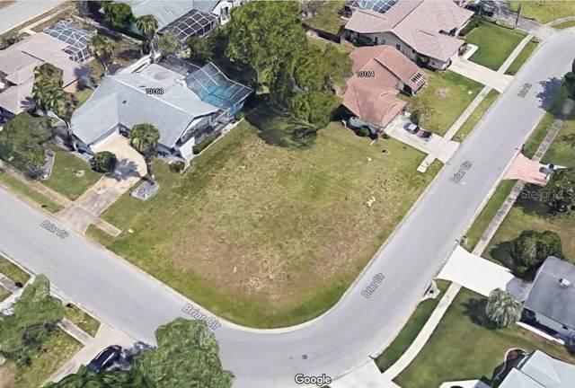 10166 Briar Circle, Hudson, FL 34667 (MLS #U8114937) :: Pepine Realty