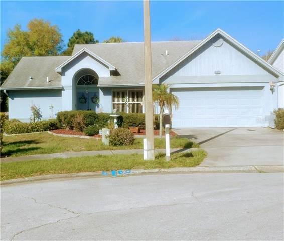 4922 Klosterman Oaks Court, Palm Harbor, FL 34683 (MLS #U8114942) :: Delta Realty, Int'l.