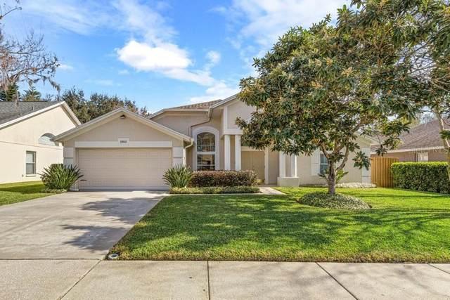 3963 Eagle Cove West Drive, Palm Harbor, FL 34685 (MLS #U8115040) :: Delta Realty, Int'l.
