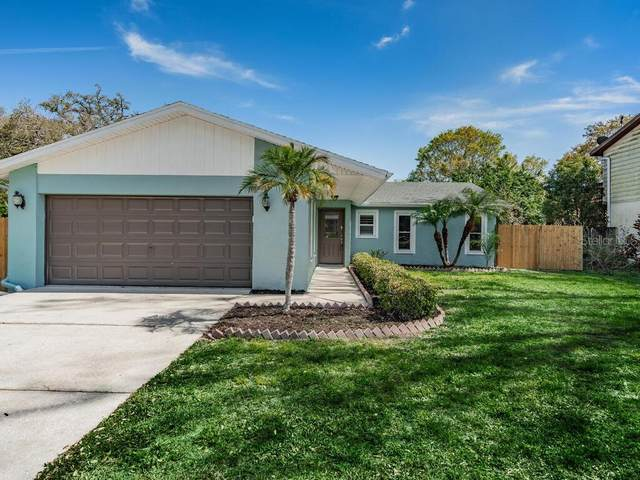 3324 Briarwood Lane, Safety Harbor, FL 34695 (MLS #U8115070) :: Delta Realty, Int'l.