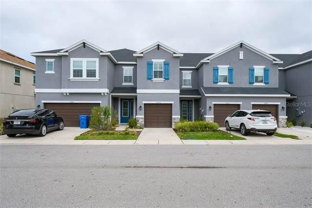12313 Bayou Flats Lane, Tampa, FL 33635 (MLS #U8115096) :: Zarghami Group