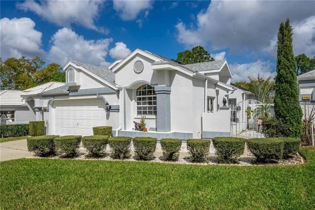 10479 Casa Grande Circle, Spring Hill, FL 34608 (MLS #U8115123) :: Bob Paulson with Vylla Home