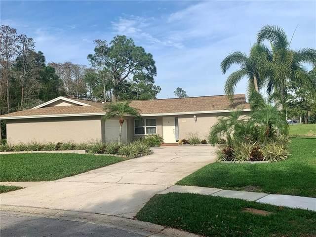 3553 Fairway Forest Drive, Palm Harbor, FL 34685 (MLS #U8115209) :: Delta Realty, Int'l.