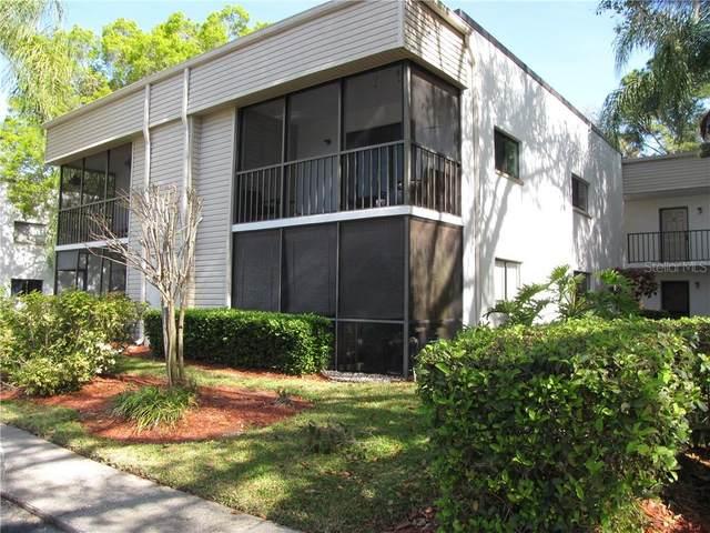 2375 Fox Chase Boulevard #257, Palm Harbor, FL 34683 (MLS #U8115245) :: Delta Realty, Int'l.