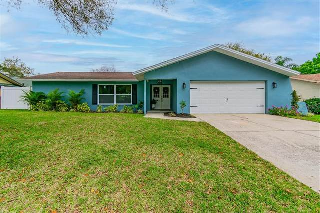 2900 Deer Run N, Clearwater, FL 33761 (MLS #U8115255) :: Vacasa Real Estate