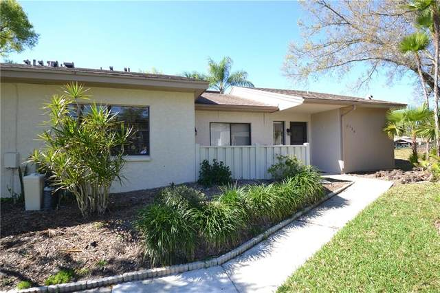 120 Sylvia Place, Oldsmar, FL 34677 (MLS #U8115282) :: Delta Realty, Int'l.