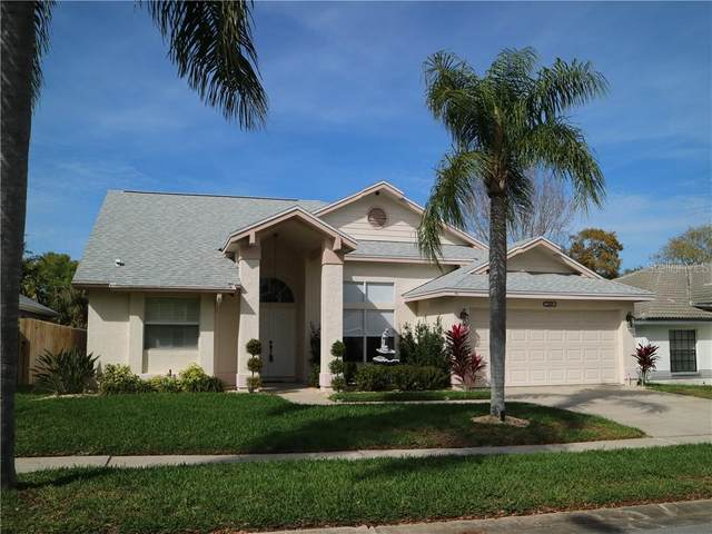 1089 Clippers Way, Tarpon Springs, FL 34689 (MLS #U8115327) :: Team Pepka