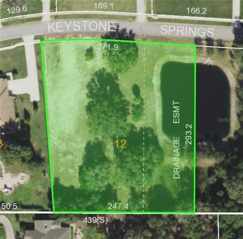 0 Keystone Springs Road, Tarpon Springs, FL 34688 (MLS #U8115395) :: Delta Realty, Int'l.