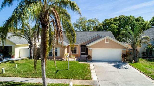 1462 Bay View Street, Tarpon Springs, FL 34689 (MLS #U8115510) :: Positive Edge Real Estate