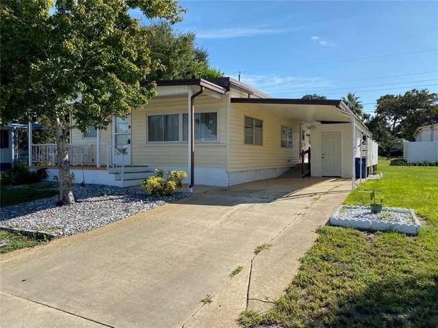 2116 Kepner, Holiday, FL 34691 (MLS #U8115538) :: BuySellLiveFlorida.com