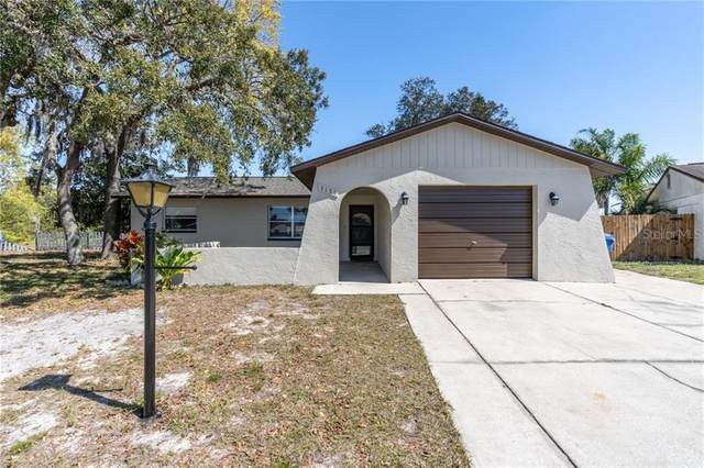 3151 Lecanto Street, Holiday, FL 34691 (MLS #U8115854) :: Gate Arty & the Group - Keller Williams Realty Smart