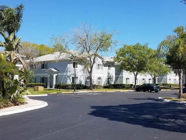4140 Dolphin Drive, Tampa, FL 33617 (MLS #U8116726) :: CENTURY 21 OneBlue
