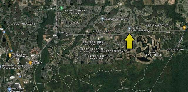 10335 Cross Creek Boulevard Suite E, Tampa, FL 33647 (MLS #U8116854) :: Team Bohannon Keller Williams, Tampa Properties