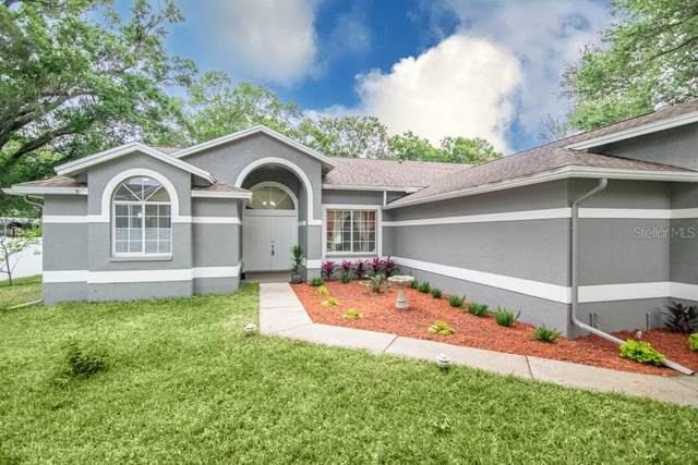 14901 Sugar Cane Way, Clearwater, FL 33760 (MLS #U8117579) :: Team Borham at Keller Williams Realty
