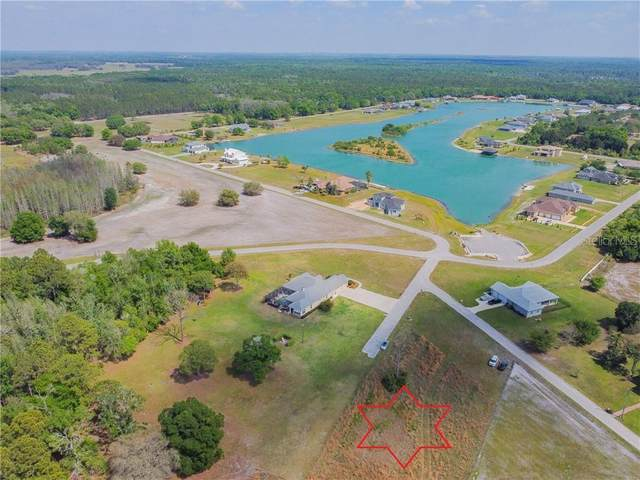 Hideout Trail Way, Land O Lakes, FL 34639 (MLS #U8117699) :: Southern Associates Realty LLC