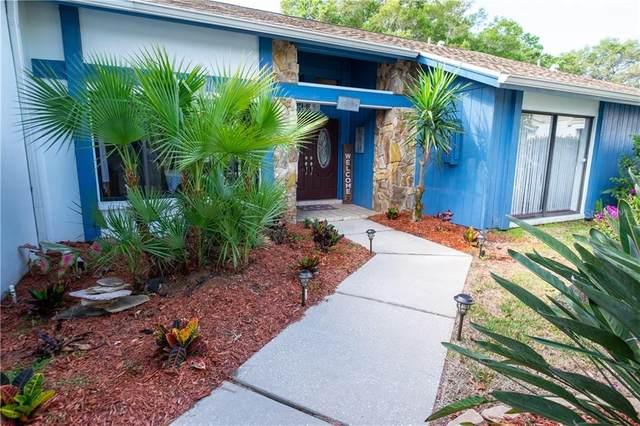 2943 Mayfair Court, Clearwater, FL 33761 (MLS #U8117902) :: Burwell Real Estate
