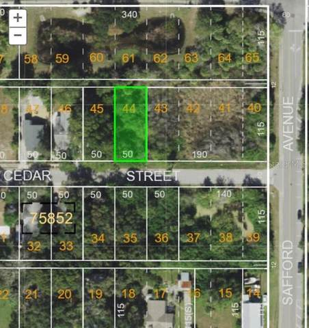 Cedar Street, Tarpon Springs, FL 34689 (MLS #U8118012) :: Alpha Equity Team