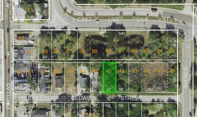 Cedar Street, Tarpon Springs, FL 34689 (MLS #U8118015) :: Alpha Equity Team