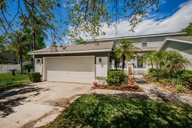 461 E Curlew Place, Tarpon Springs, FL 34689 (MLS #U8118094) :: Vacasa Real Estate