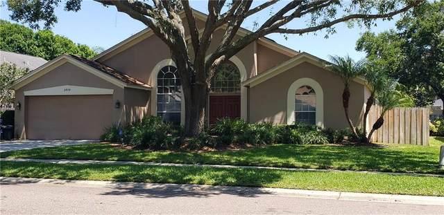 3979 Jenita Drive, Palm Harbor, FL 34685 (MLS #U8118096) :: Burwell Real Estate