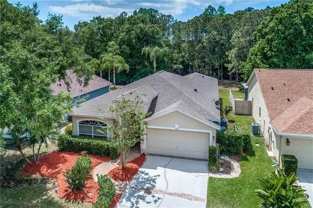 13123 Royal George Avenue, Odessa, FL 33556 (MLS #U8118564) :: Southern Associates Realty LLC