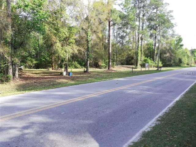 11504 Lake Drive, New Port Richey, FL 34654 (MLS #U8118611) :: The Lersch Group