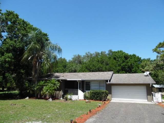 2505 Stampede Court, Wimauma, FL 33598 (MLS #U8118619) :: Griffin Group