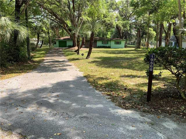19568 Burkitt Road, Dunnellon, FL 34432 (MLS #U8118760) :: MavRealty