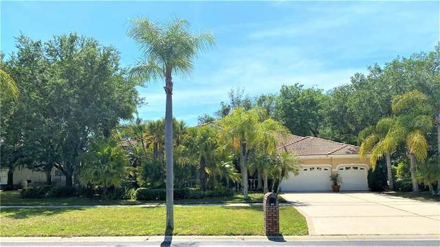 3332 Crescent Oaks Boulevard N, Tarpon Springs, FL 34688 (MLS #U8118764) :: Everlane Realty